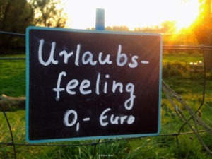 Preiskalkulation (Bild: Petra Welz)